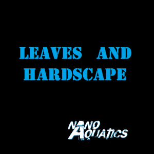 Leaves & Hardscape